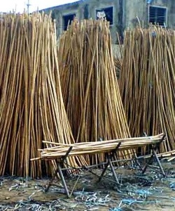 What is rattan furniture cane and where does it come from? Picture. Cane for chair ... & What is rattan cane for chairs? - Chair Caning Rushing Refinish ...